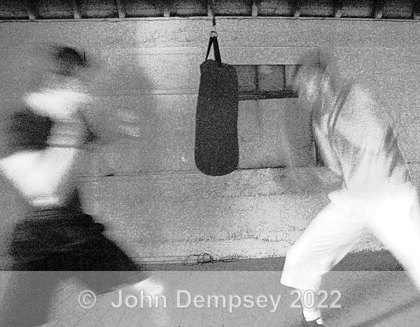 New Boxers 1 - 365