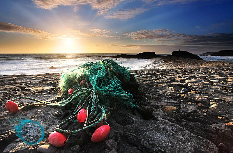 Washed Up - Seascapes