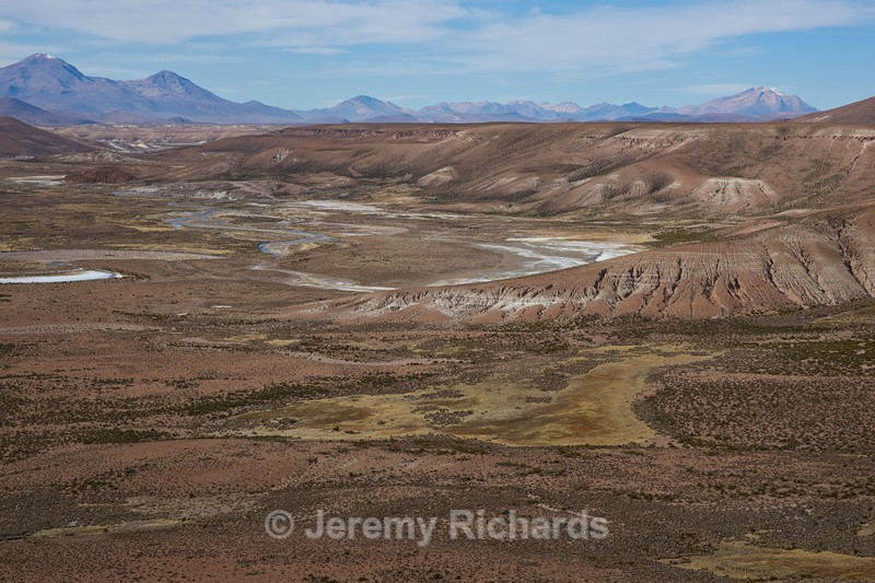 Wide Valley on the Altiplano - Altiplano of North-East Chile