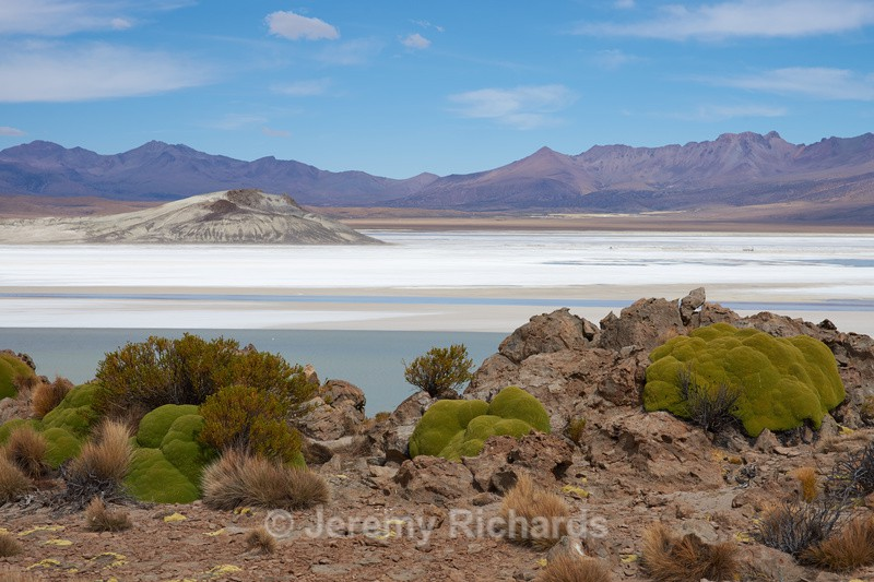 Salar de Surire - Altiplano of North-East Chile