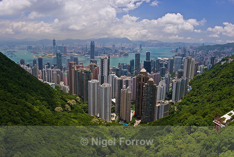 Hong Kong Harbour from Victoria Peak - China