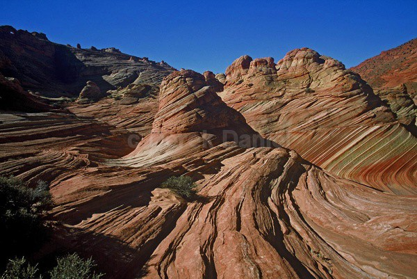 North Coyote Buttes #3 - Arizona
