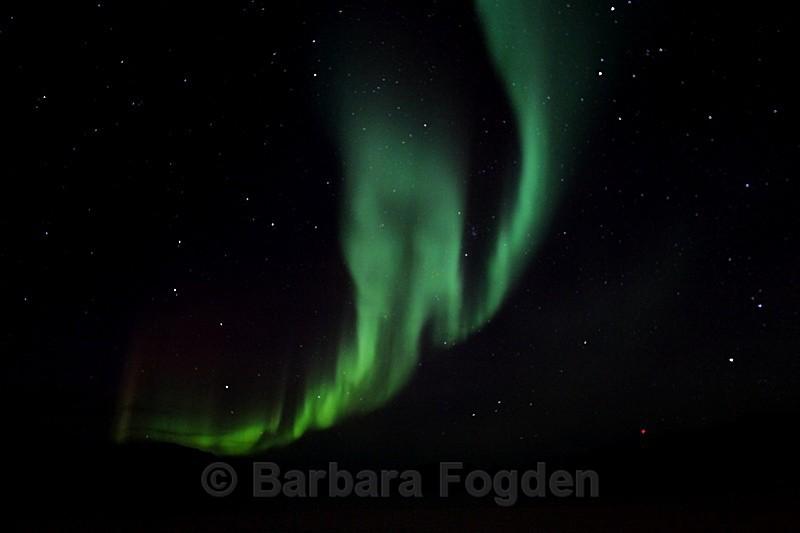 Northern Light in Adventdalen 5352 - Polar night