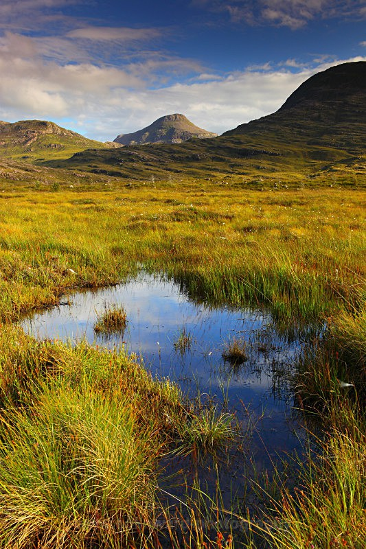 Glen Torridon     ref 8618 - West Highlands