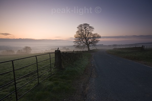 Early Mist - Peak District
