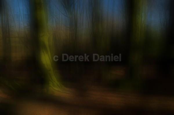 Tree Impression #3
