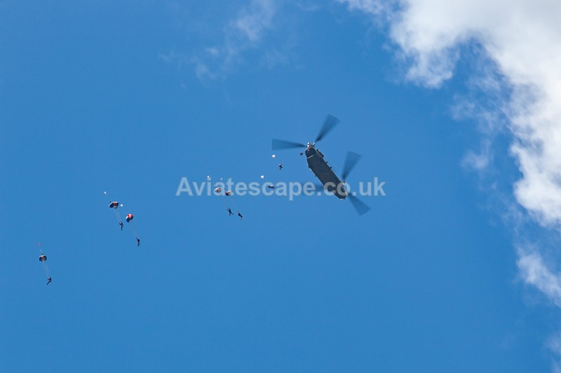 The RAF Falcons_0347 - Aerial Display Teams