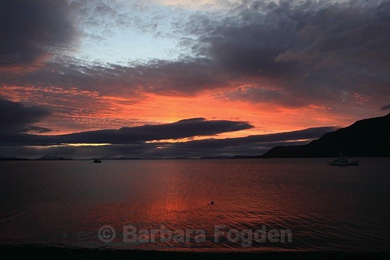 Adventfjord 4803 - Colours of Svalbard