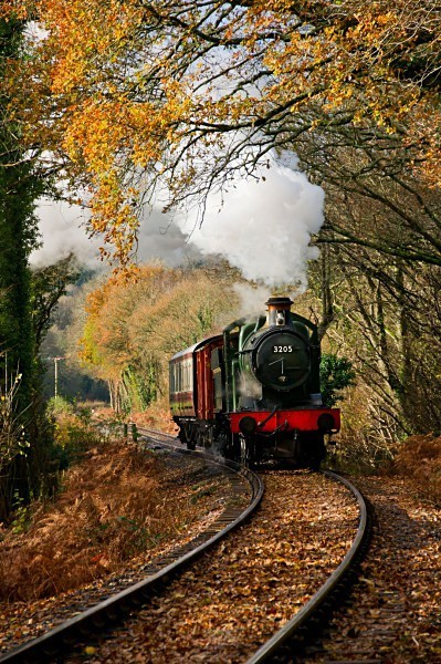 Autumnal colours - The Lure of Steam