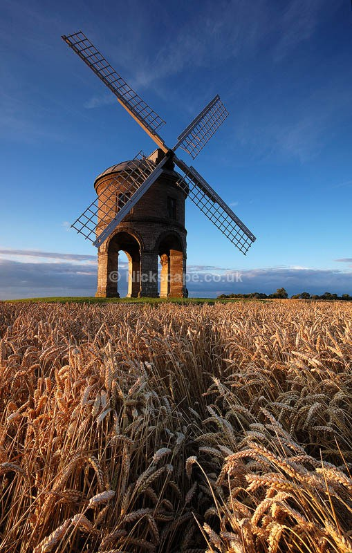 Chesterton Windmill Corn Field | Warwickshire Photos