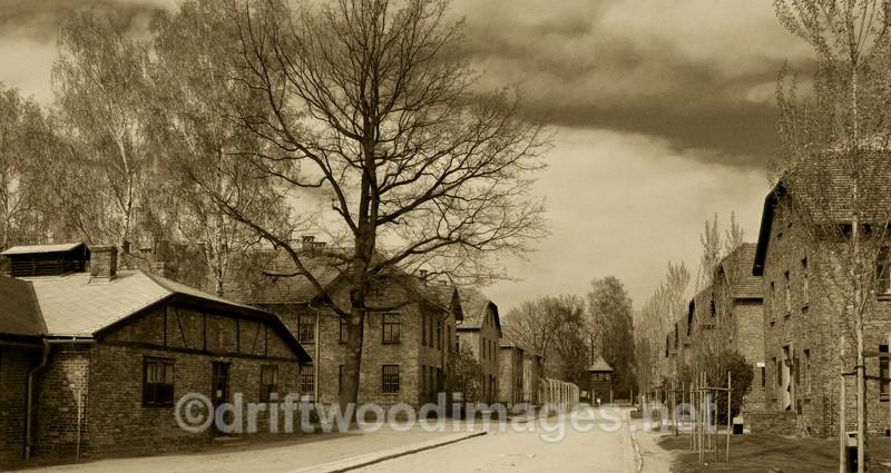 - Auschwitz/Birkenau