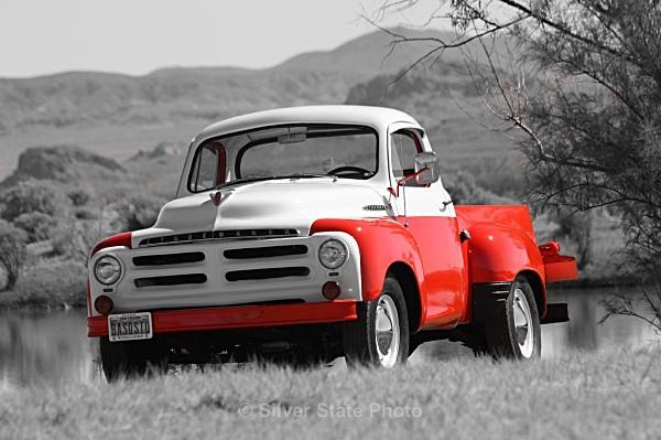 1955 Studebaker Pickup - 'Variety'