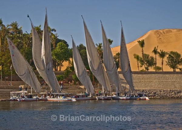 Falukas on the River Nile at Aswan Egypt - Egypt Nile Tour 08