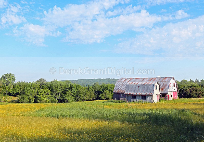 Hay & Cattle Barn in Rural New Brunswick Canada - Old Barns & Buildings