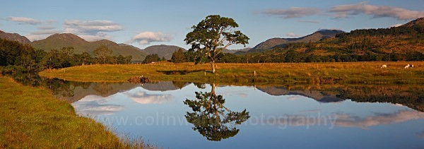 Loch Eil     ref eil 4 - West Highlands