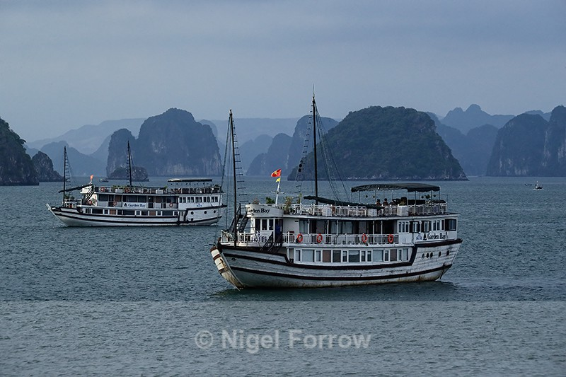 Tourist boats anchored in Ha Long Bay at sunset - Vietnam
