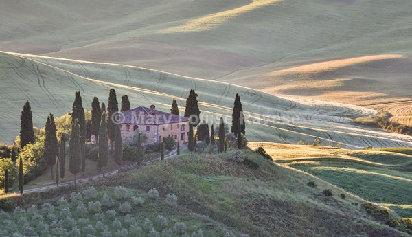 Belvedere - Travel