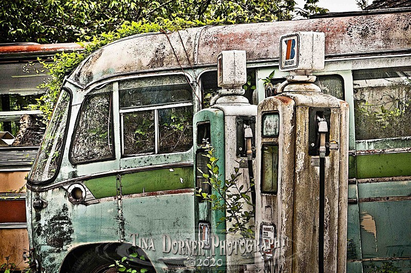 Derelict Bus by Tina Dorner Photography, Forest of Dean and Wye Valley, Gloucestershire