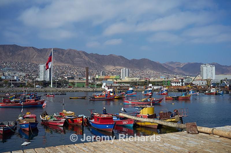 Fishing Harbour - Coastal Chile