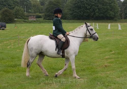 3 - Moniaive Horse Show 2008