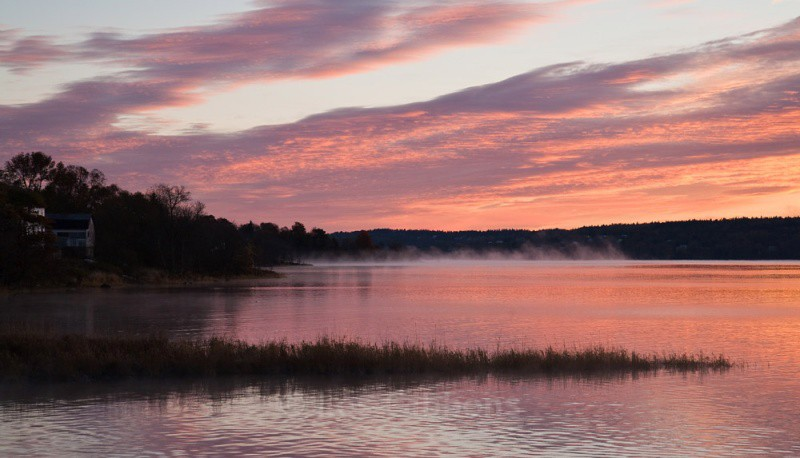 dawn mist - New Brunswick