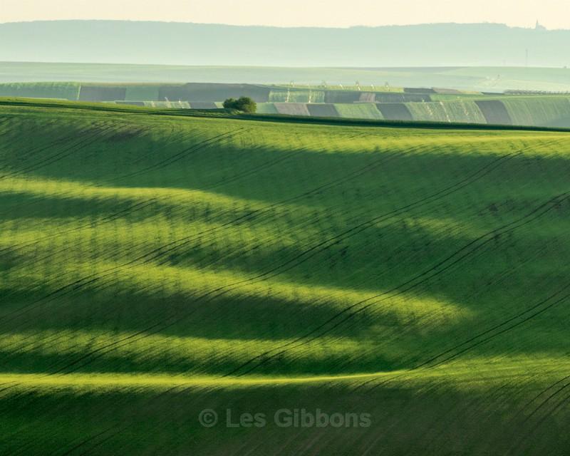 curves - Moravia