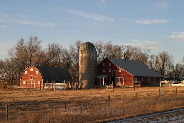 Winter View - Barns & Remnants