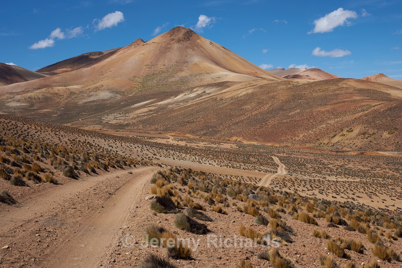 Shades of Brown - Altiplano of North-East Chile