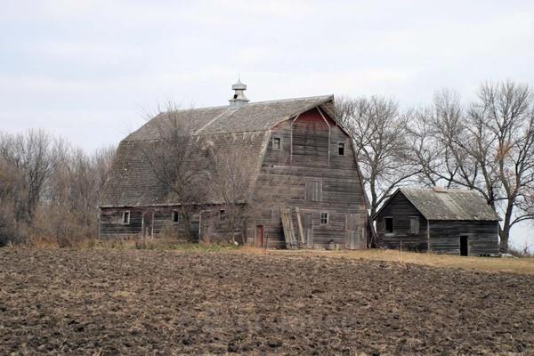 Weathered Barn - Barns & Remnants