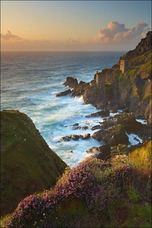 Botallack Summer - Photographs of Cornwall