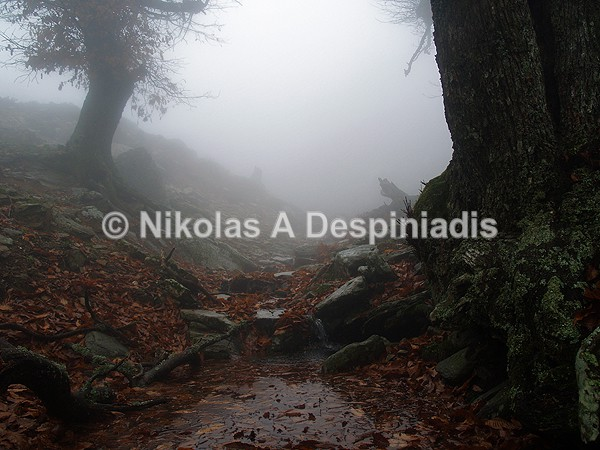 - Κεντρική Ελλάδα I Central Greece
