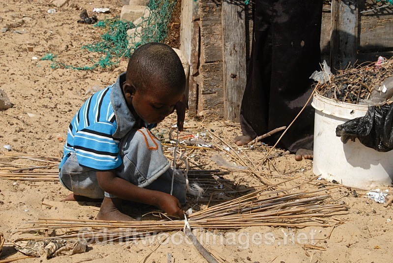 Senegal Fulani Senegal village boy making basket - Senegal Fulani Village