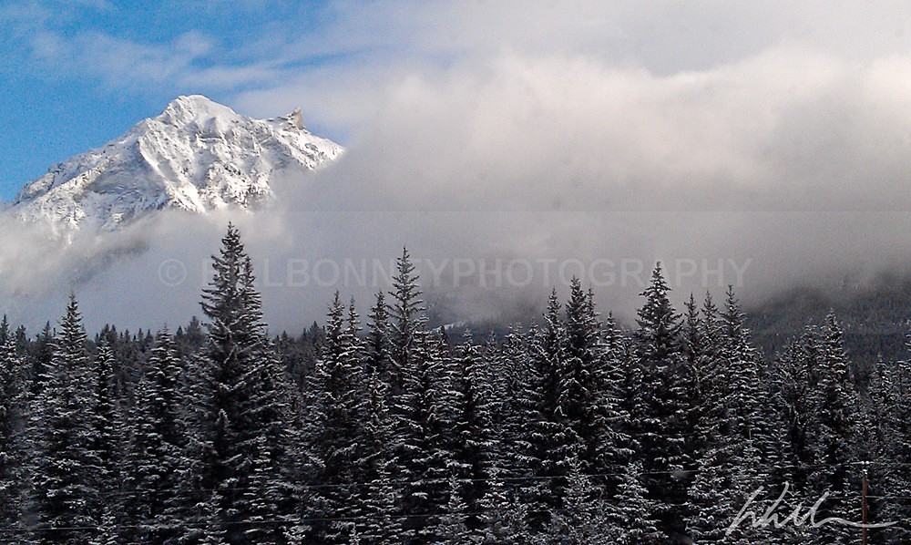 IMAG0284 - Landscapes...