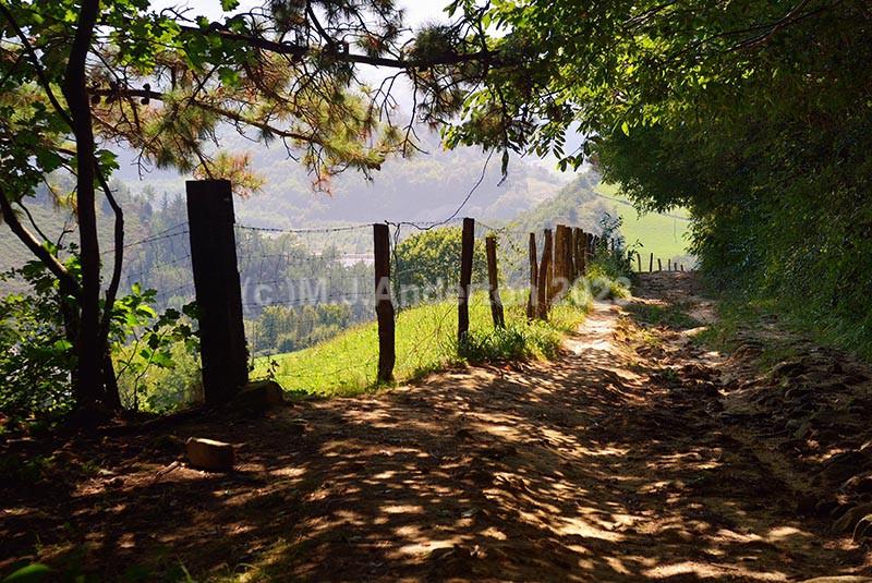 Downhill to Orio - Camino del Norte