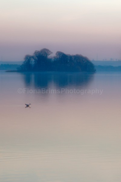 kinross-27 - Landscapes and Seascapes
