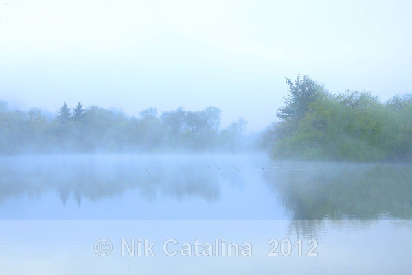 Dreamy Pond - Landscapes