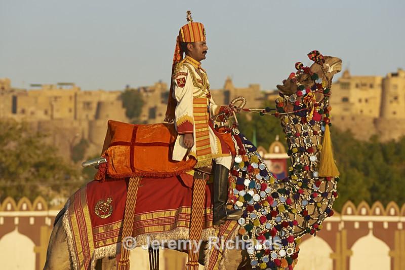 Camel Salute - India