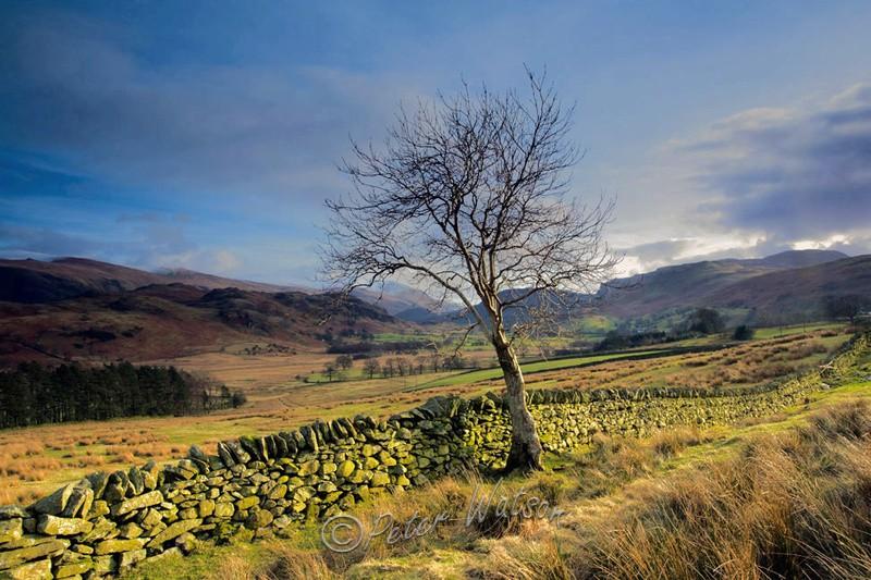 Low Rigg Cumbria - England