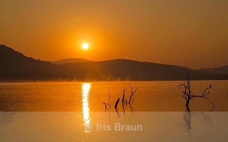 African Sunrise - Landscape
