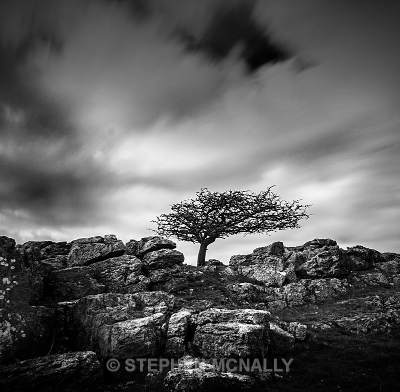 The Fell - Landscapes
