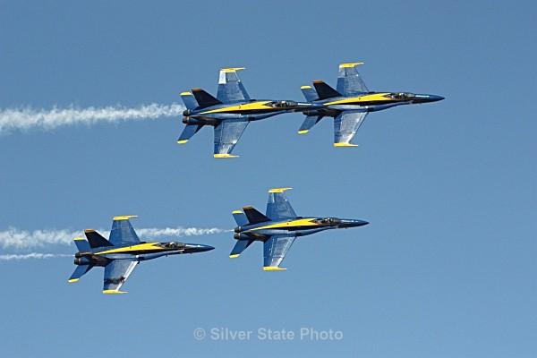 Blue Angels - Nevada Birds