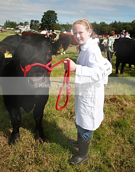 _MGN3297 - Royal Meath Show Trim Co Meath