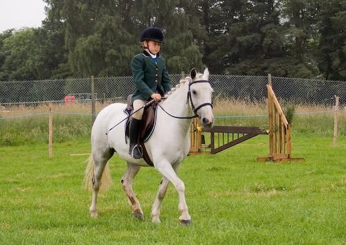 14 - Moniaive Horse Show 2008