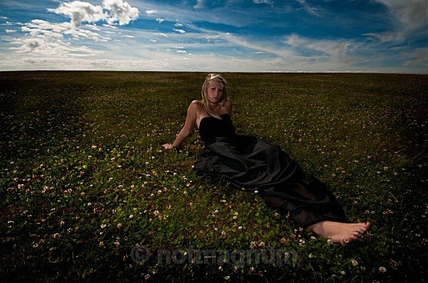 field of clover - YOUR OWN PHOTOSHOOT