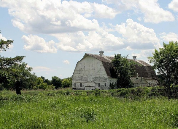 Mayville Barn - Barns & Remnants