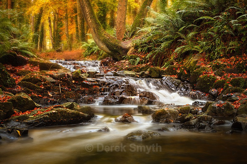 Drumleck River In Autumn - Co. Armagh