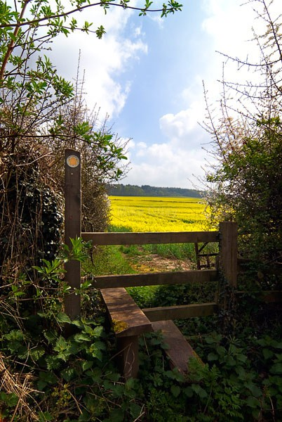 Spring - Flora & Fauna...