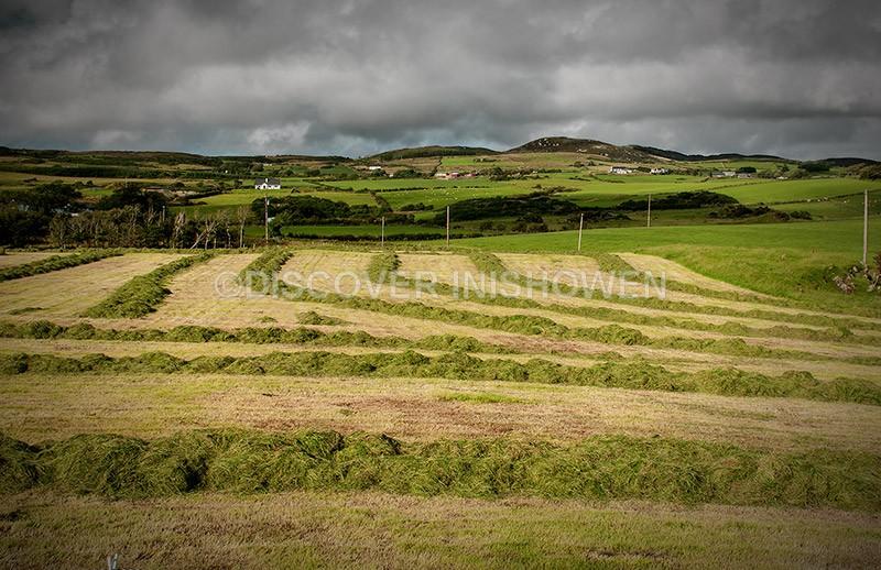 Last cut - Inishowen peninsula