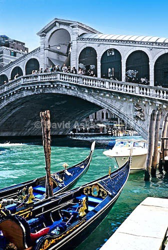 Rialto Bridge Venice - Travel & Landscape