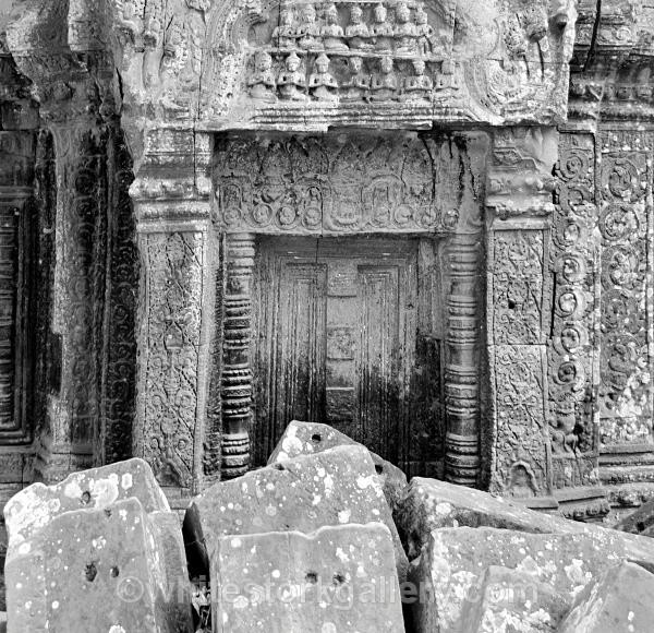 Ta Prohm, Cambodia - Asia